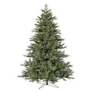 Vickerman Blue Noble Fir Pre lit Christmas Tree