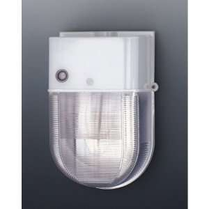 Designers Fountain HPSL50 06 High Pressure Sodium 1 Light Outdoor Wall