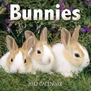 Animal Calendars Bunnies   12 Month   Mini   6.9x6.9