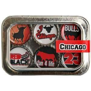 Chicago Bulls Basketball Bottle Cap 6 pc Magnet Set w