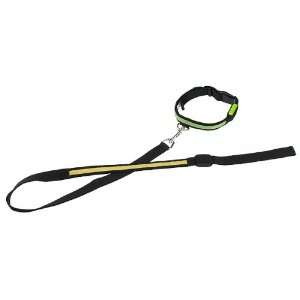 Adjustable LED Pet/Dog Collar(Large, Green) and 4ft Yellow